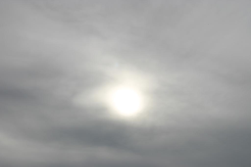 niwelinska-grey-sun-10.png