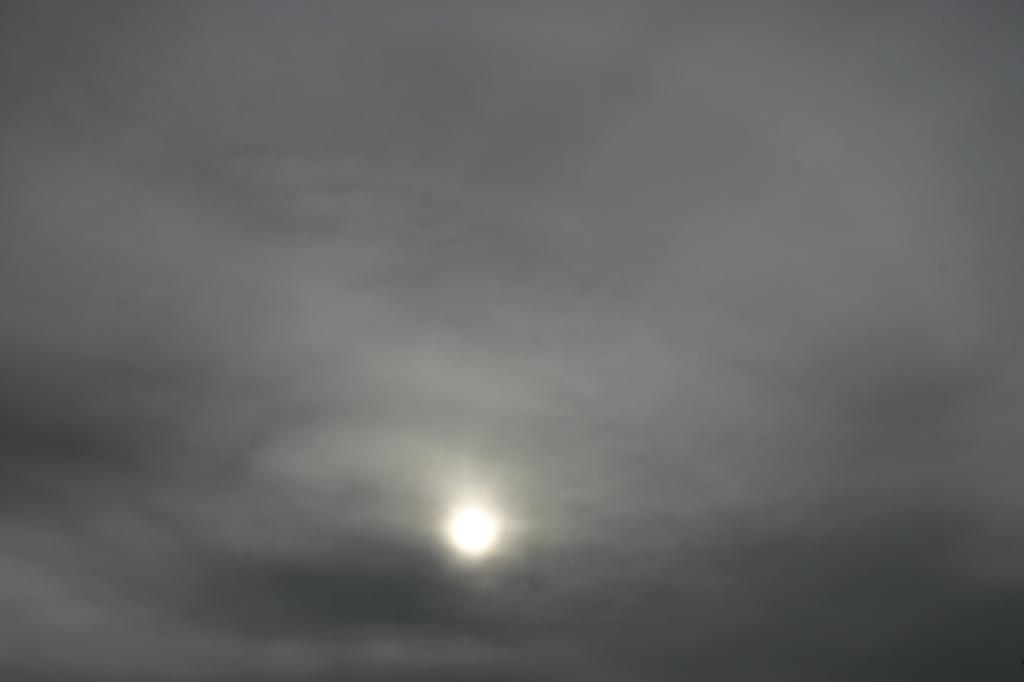 niwelinska-grey-sun-2.png