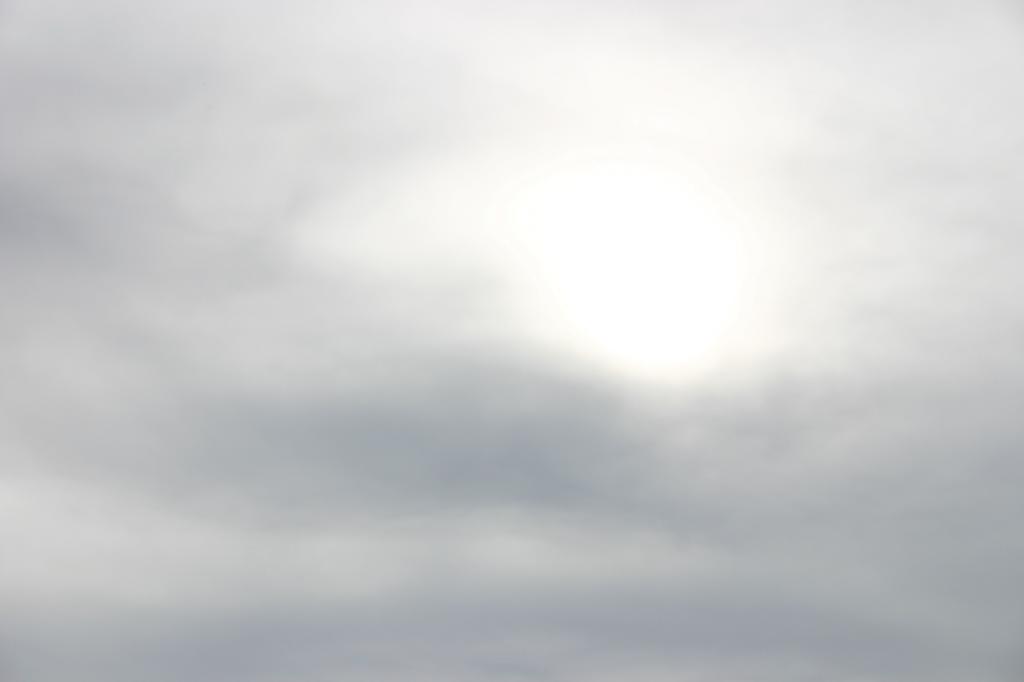 niwelinska-grey-sun-14.png